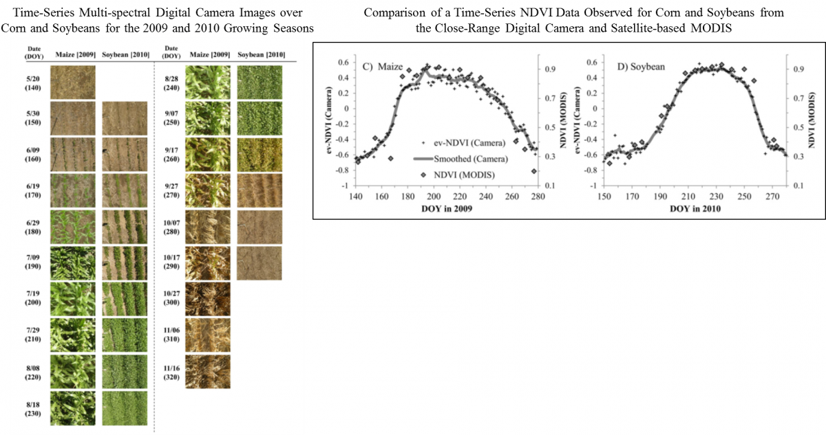 A growing season time series of multi-spectral image collected with a conventional digital camera over a corn and soybeans (on left). Comparison of a green chlorophyll index (CI) data time series observed over corn and soybeans from imagery acquired from the close-range digital camera and the satellite-based MODIS sensor (on the right).