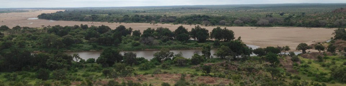 Dr. Trenton Franz studies endangered riparian vegetation at Mapungubwe National Park in South Africa