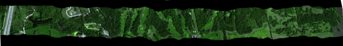 Remote sensing and geographic information system for natural resource management