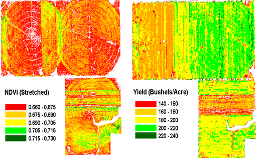 Vegetation index, yield maps of Nebraska cornfields. (Crop Yield Monitoring project)